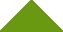 зеленый треугольник